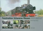 Görgen, Richard (Hrsg.): Faszination Schwarze Riesen. 1990 bis 2010 - Dampflokomotiven im Einsatz vor alltäglichen Zügen