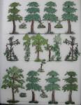 Heinrichsen: Bäume und Gehölze