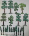 Heinrichsen: Schöne Laubbäume