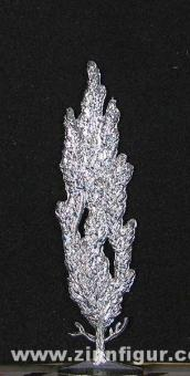 Pappel, 5 cm hoch