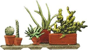 4 Topfpflanzen
