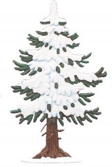 Fir Tree Snow Covered