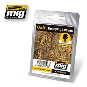 Oak Leaves - Decaying
