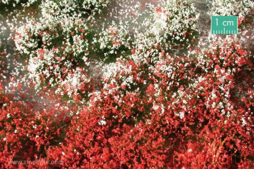 Flowery Tufts, Summer