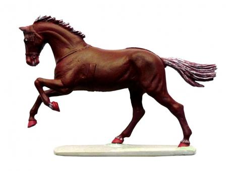 Pferd im Galopp - für Husaren