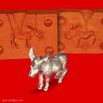 Kleiner Esel - Maultier