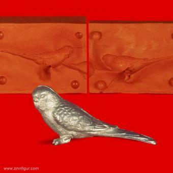 Wellensittich (Vogel)