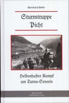 Bellin, B.: Sturmtruppe Picht