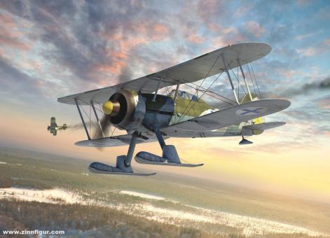 """J-8 Gladiator """"Schwedische Luftwaffe"""""""
