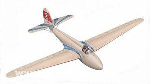 DFS Stummel Habicht Segelflugzeug