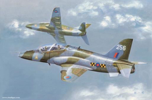 Hawk T1A