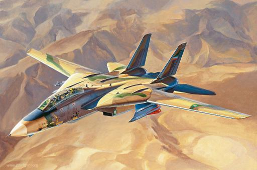 """F-14A Tomcat """"Persian Cat"""" - Iranische Luftwaffe"""