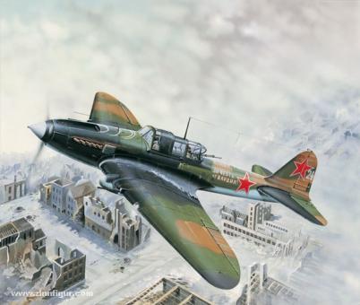 IL-2M Bodenkampfflugzeug