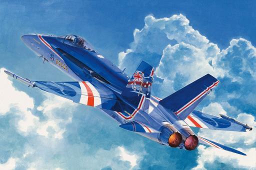 """F/A-18C """"RAAF"""""""
