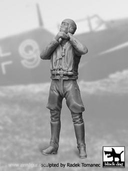 Luftwaffe Pilot 1940-45