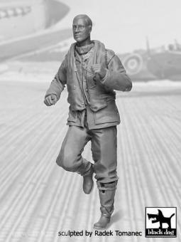 RAF Jagdpilot 1940-45