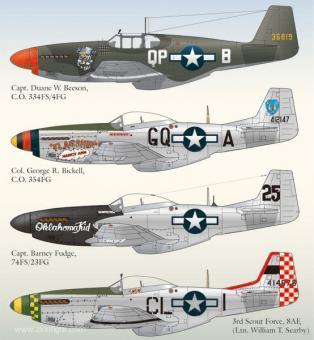 North American P-51 Mustang Teil 3