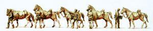 Kavalleristen mit Pferden, stehend