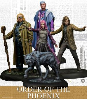 Order of the Phoenix - Harry Potter Game
