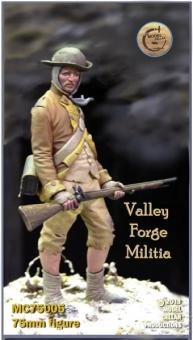 Militiaman at Valley Forge