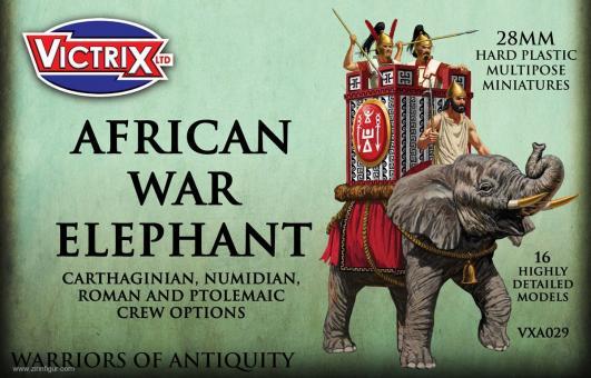 Afrikanischer Kriegselefant