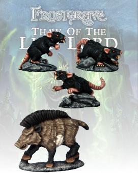 Boar & Giant Rats