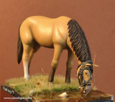 Lediges Pferd