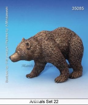 Animals Set 22: Bear