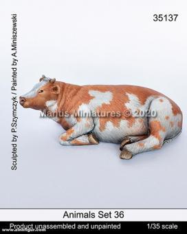 Tiere Set 36: Kuh