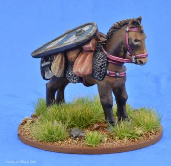 Pack Pony with Kite Shield