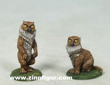 Eulenbärjunge (männlich & weiblich)