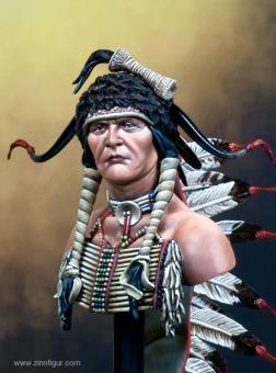 Sioux-Krieger