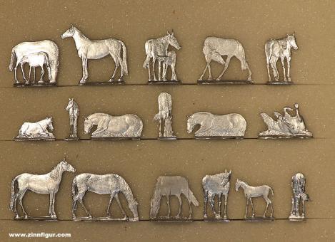 Romund: Mustangherde - Pferde, 19. Jh.