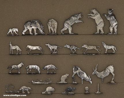 Romund: Wildtiere des Norden